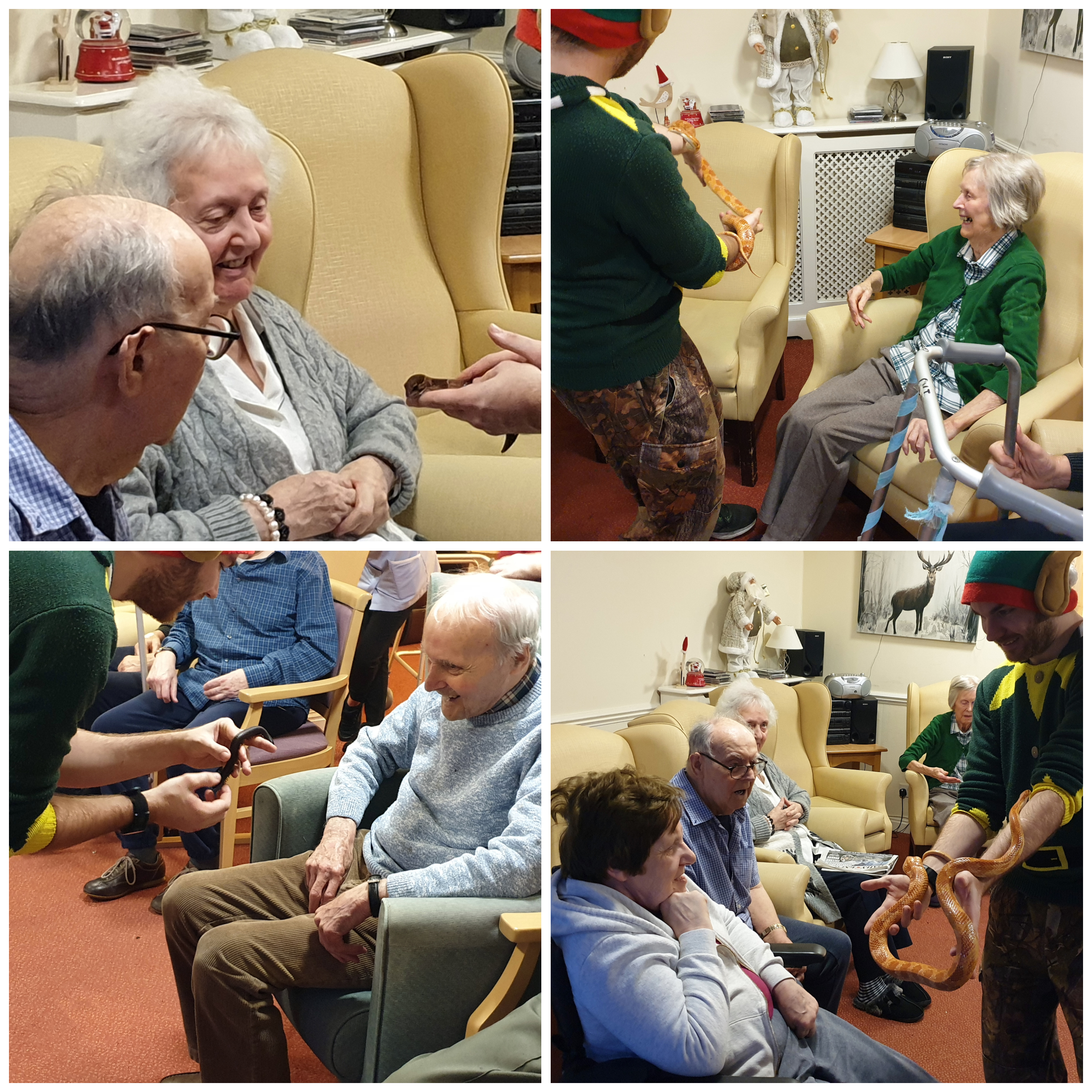 Wallside Grange Care Home residents meet some critters during a ZooLab animal therapy session.